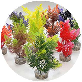 Nano Fiesta Aqurium Plants