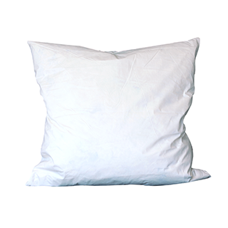 Duck Feather Cushion Pad 20""