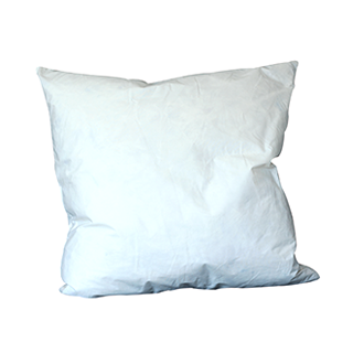 Duck Feather Cushion Pad 24""