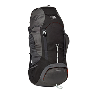 Bobcat Backpack